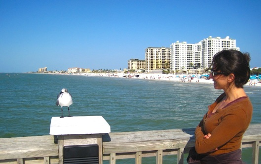 1-1-13-Clearwater