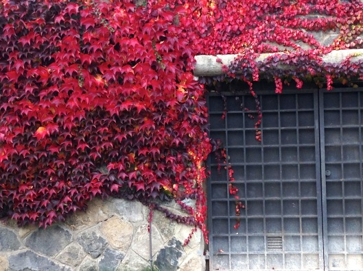 Prague-Fall